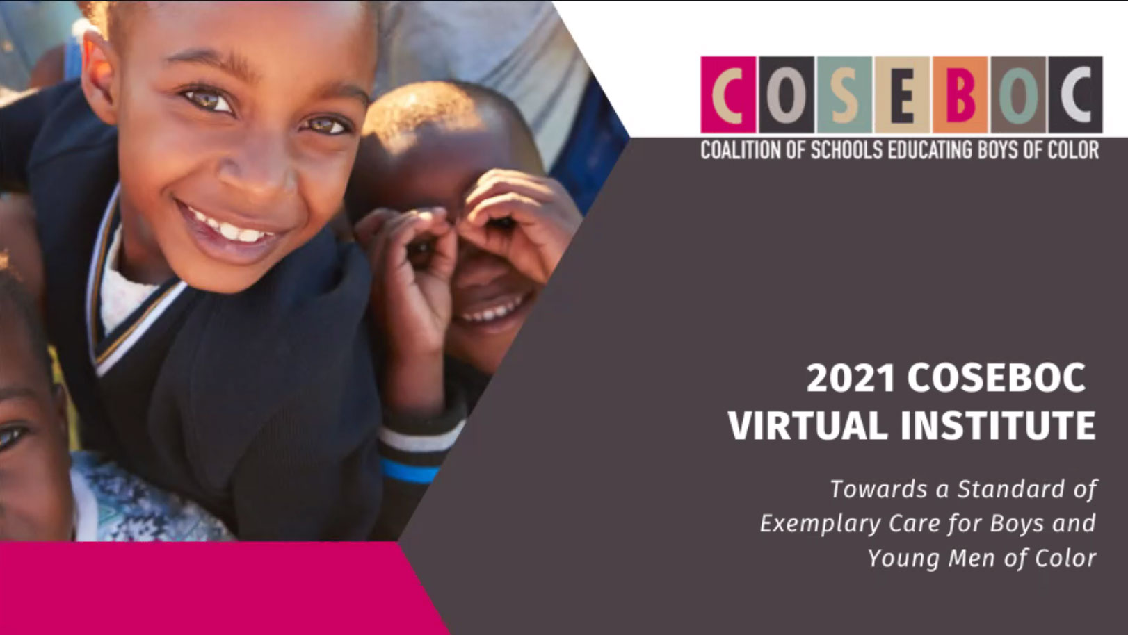 Session 1: COSEBOC Virtual Institute – The BERC Report and Beyond
